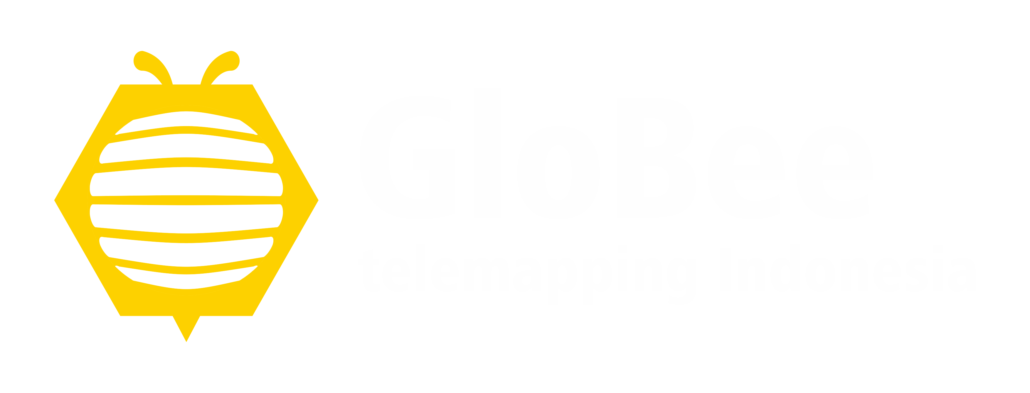 Globee Telemapping
